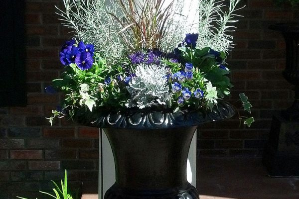 Moss-Baskets-&-Custom-Seasonal-Containers13