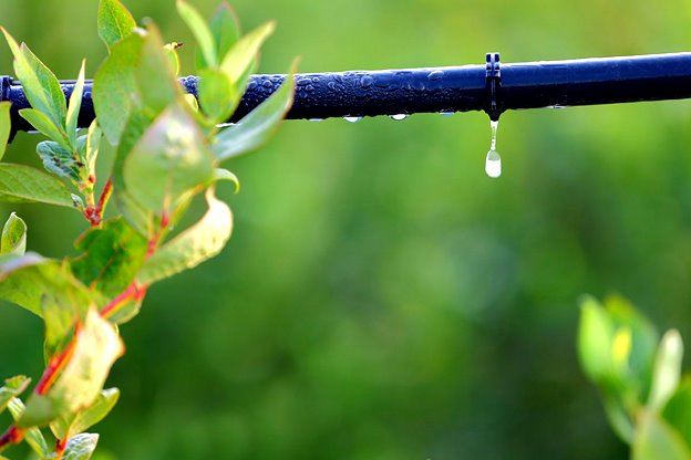 DRIP IRRIGATION – the eco-friendly watering solution