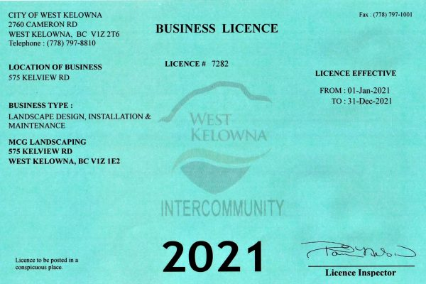 Business license 2021--